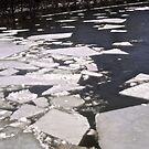 Ice in the River - April 6/14 by Shulie1