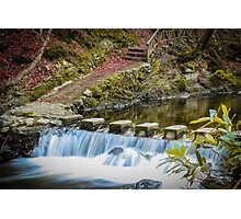 Stepping Stones, Tollymore Forest Park Photographic Print