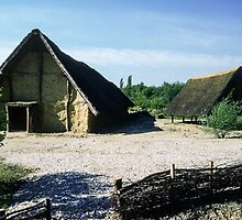 Reconstructed C4 BC cottage Beaune France 198404290001 by Fred Mitchell