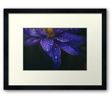 These Tears You Cry Framed Print