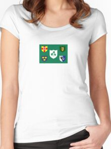 Ireland National Rugby Union Flag Women's Fitted Scoop T-Shirt