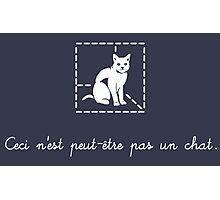 Le Chat de Schrödinger Photographic Print