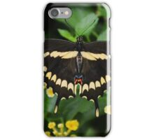 Black and Yellow Butterfly iPhone Case/Skin