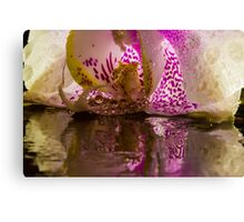 Rainy Orchid Canvas Print