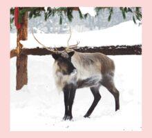 Reindeer for Christmas. Baby Tee