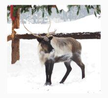 Reindeer for Christmas. Kids Tee