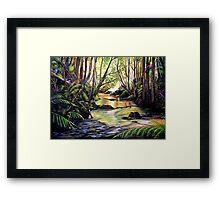 Blue Mountains Creek Framed Print