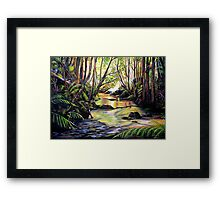 Blue Mountains Creek Framed Print