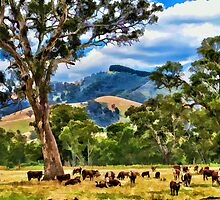 Glenburn, Victoria by Marg Thomson Photography