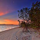 Tropical Paradise by Peter Doré