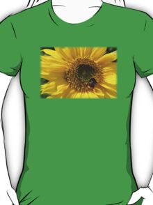 Cute Bumble Bee on a Sunflower T-Shirt