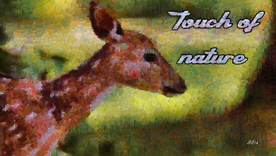 Touch of nature by Fernando Fidalgo