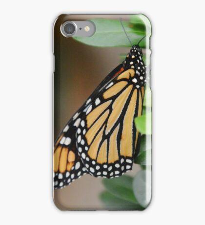 Folded Butterfly iPhone Case/Skin