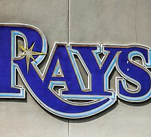 Tampa Bay Rays Logo, Florida by chris-csfotobiz