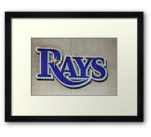 Tampa Bay Rays Logo, Florida Framed Print