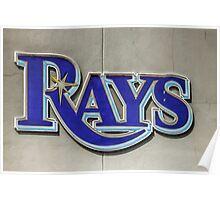 Tampa Bay Rays Logo, Florida Poster