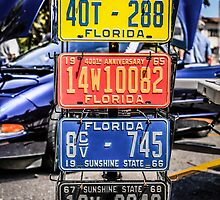 Vintage Florida Vehicle Plates by Chris L Smith