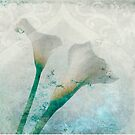 Lilies by Elena Ray