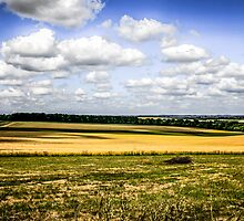 Rural Dorset Landscape by chris-csfotobiz