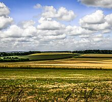 Rural Dorset Landscape by Chris L Smith