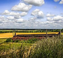 Rolling Landscape of Dorset by Chris L Smith