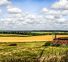 Rural Dorset Panoramic by Chris L Smith