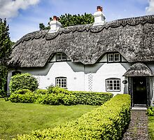 Thatched Cottage of Hants by Chris L Smith