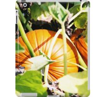 Pumpkins iPad Case/Skin
