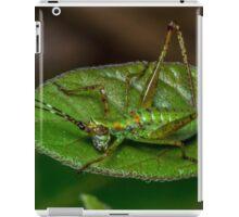Bright Bug iPad Case/Skin