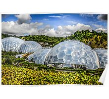 The Eden Project at St. Austell Cornwall Poster