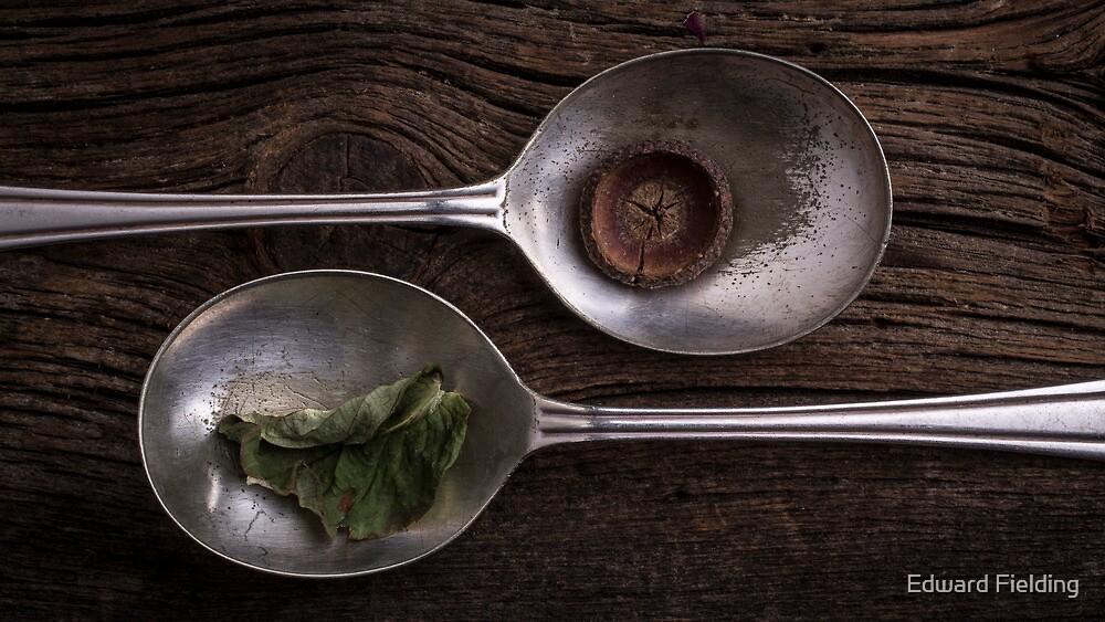 Silver Spoons by Edward Fielding