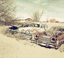 Rusting Classics by Rob Hawkins