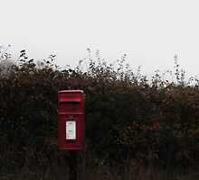Little Red Box by maxpurvis