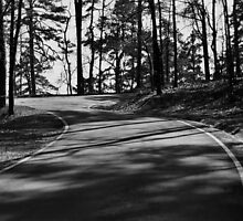 Mountain Road in Hot Springs Arkansas by Emily Rose