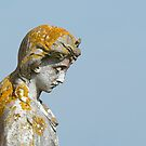 Statue with Lichen by Sue Robinson