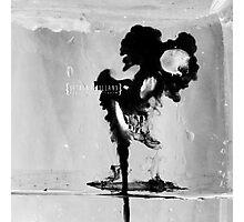 171/365 Photographic Print