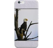 eagle striking a pose (square) iPhone Case/Skin