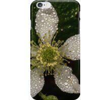 BlackBerry Bloom iPhone Case/Skin