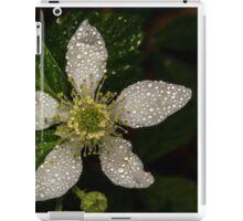 BlackBerry Bloom iPad Case/Skin