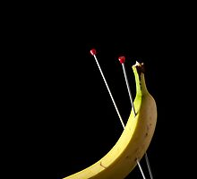 I Hate Fruit - Banana by Alan Organ LRPS