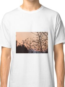 Natural Classic T-Shirt