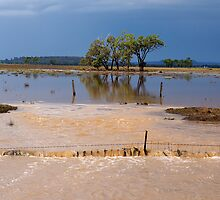 Flood Water in the Darling Downs 2014 by CarolHancock