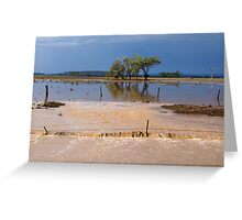 Flood Water in the Darling Downs 2014 Greeting Card