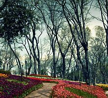 flowers an trees by laikaincosmos