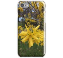 Yellow bloom before summer  iPhone Case/Skin