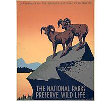 Preserve Wildlife Photographic Print