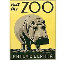 Visit the Zoo, Hippo Photographic Print