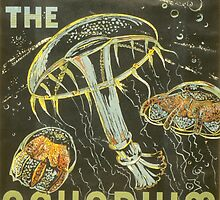 Visit the Aquarium, Jelly Fish by Vintagee