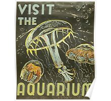 Visit the Aquarium, Jelly Fish Poster