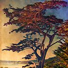 Carmel Tree by Claude LeTien